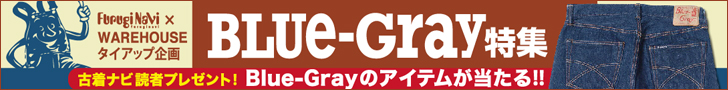 ����ʥ� Blue-Gray �ý���
